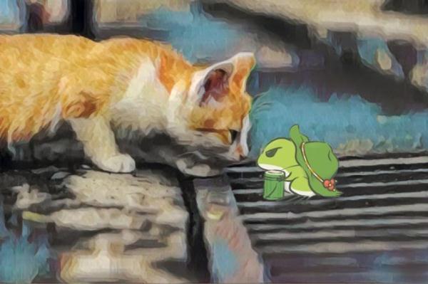 中山大学的猫.JPEG