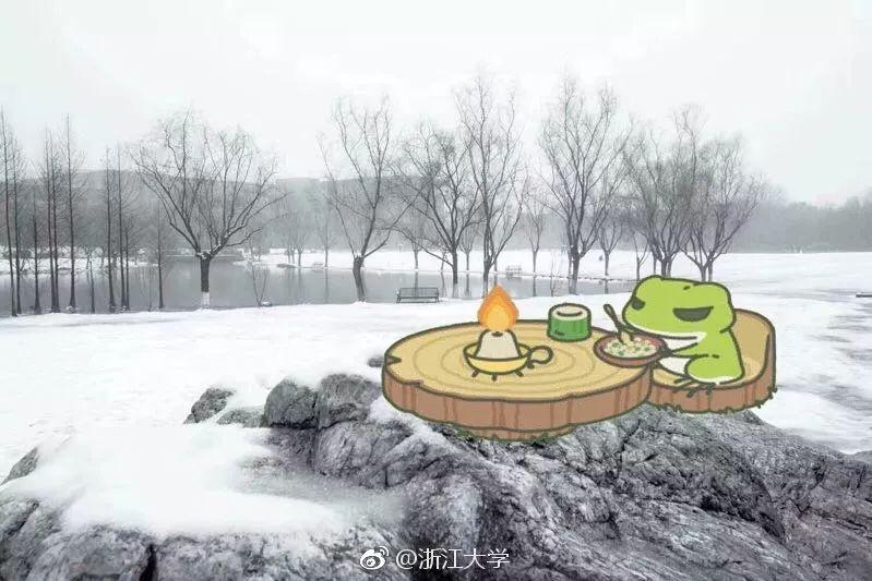 浙江大学的雪景.jpg