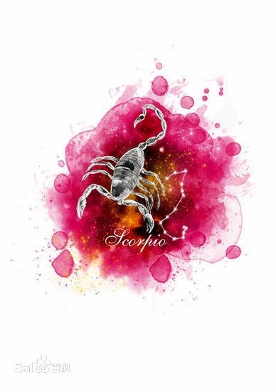 蝎子.jpg