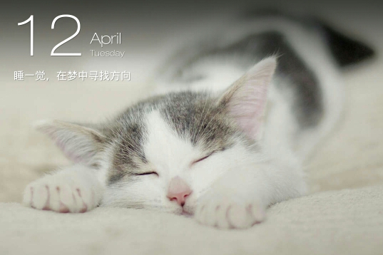 zuimei_wallpaper_9bff4230d1461ecb7b913a8cce623cc2_15325fdd43d23f9077e86e2c8f735e3d_0.jpg